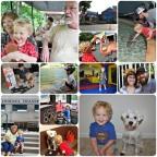 week 29 - 52 collages 2013 - thekarpiuks